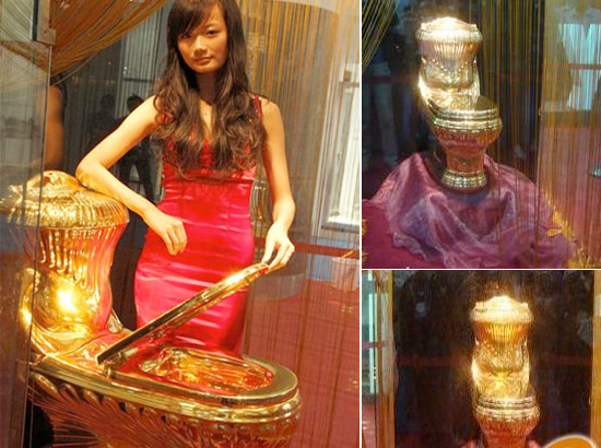 Name  gold toilet ys6kt jpg Views  150 Size  79 2 KBDog Talk  is this normal . Solid Gold Toilet Seat. Home Design Ideas