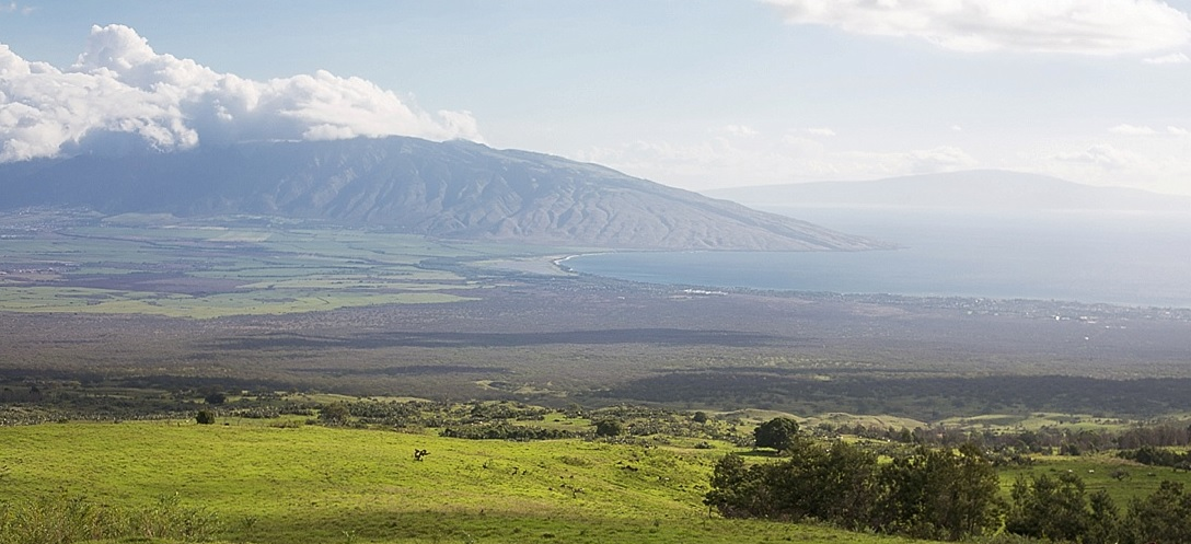 Name:  maui.jpg