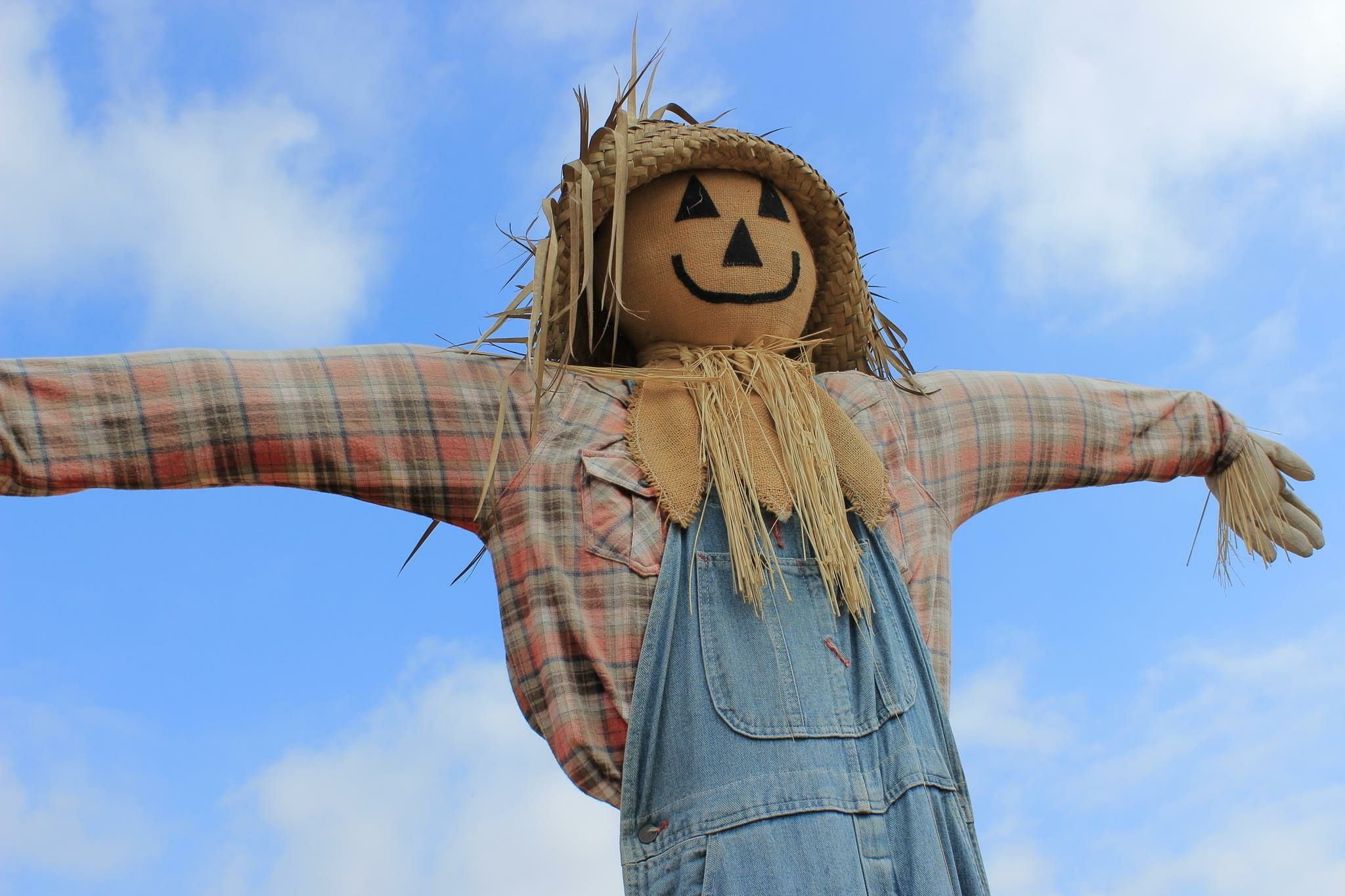 Name:  low-angle-view-scarecrow-against-cloudy-sky-562838541-5aaf18adfa6bcc00360a609c.jpg Views: 140 Size:  288.4 KB