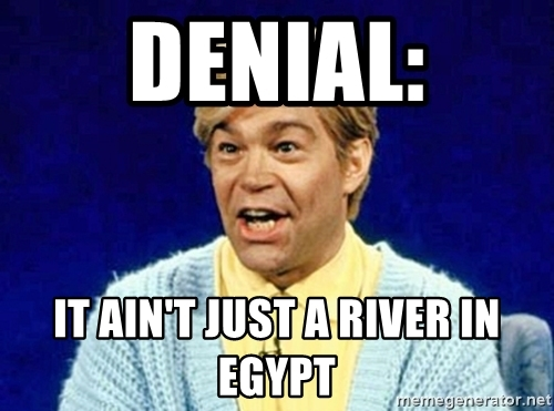 Name:  denial-it-aint-just-a-river-in-egypt.jpg